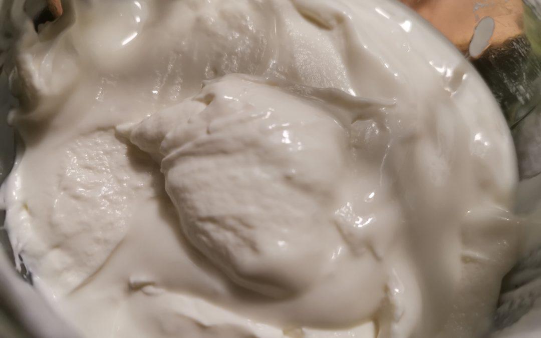 Griechischer Joghurt selbstgemacht