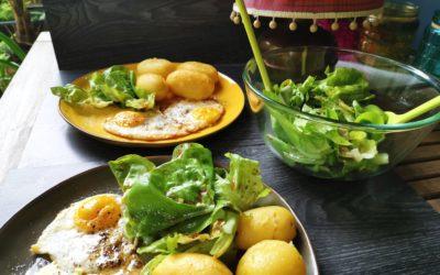 Spiegelei mit Pellkartoffeln und grünem Salat